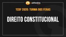 Direito Constitucional (Turma dos Feras)