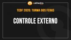 Controle Externo (Turma dos Feras)